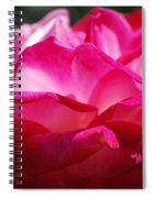 Rose Like A Lotus Flower Spiral Notebook