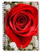Rose Macro 1 Spiral Notebook