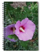 Rose Mallow Spiral Notebook