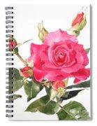 Watercolor Red Rose Margaret Spiral Notebook