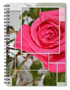 Rose Montage Spiral Notebook
