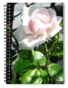 Rose Named Pearl Spiral Notebook