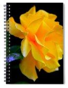 Rose Of Cleopatra Spiral Notebook
