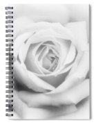 Rose Of Innocence Spiral Notebook