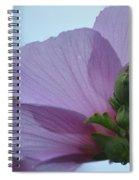 Rose Of Sharon 14-2 Spiral Notebook