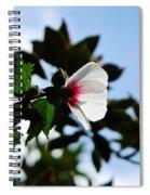 Rose Of Sharon At Dusk Spiral Notebook
