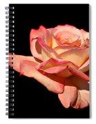 Rose On Black Background Spiral Notebook