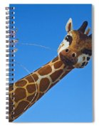 Rose Parade  Spiral Notebook