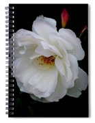 Rose Perfection Spiral Notebook