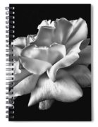 Rose Petals In Black And White Spiral Notebook