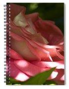 Rose Pink Spiral Notebook