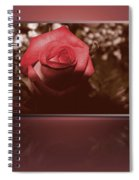 Rose Reflection 1 Spiral Notebook