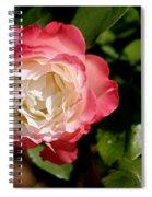 Rose Ruffles Spiral Notebook