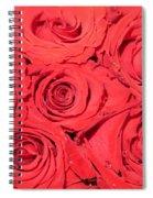 Rose Swirls Spiral Notebook