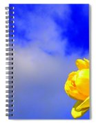 Rose To The Sky Spiral Notebook