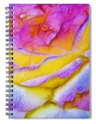 Rose With Dew Drops In Candy Colors Spiral Notebook