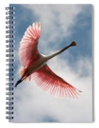 Roseate Soaring Spiral Notebook