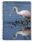Roseate Spoonbill Hunting Spiral Notebook