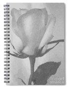 Rosebud Sketch No 1 Spiral Notebook