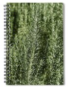 Rosemary Forest Spiral Notebook