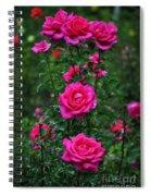Roses In The Garden Spiral Notebook
