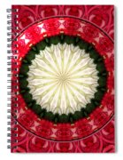 Roses Kaleidoscope Under Glass 19 Spiral Notebook