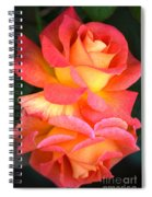 Roses Of Many Colors Spiral Notebook