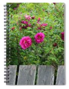 Roses On A Fence Spiral Notebook