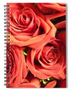 Roses On Your Wall Spiral Notebook