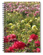 Roses Roses Roses Spiral Notebook