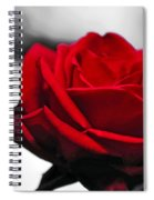 Rosey Red Spiral Notebook