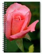 Rosey Spiral Notebook