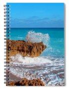 Ross Witham Beach 5 Spiral Notebook