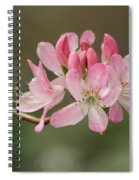 Rosy Rhododendron Spiral Notebook