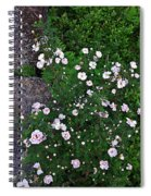 Rosy Rock Spiral Notebook