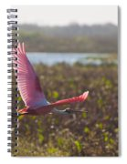 Rosy Soar Spiral Notebook