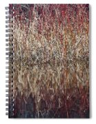Rough Spiral Notebook