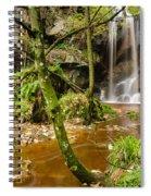 Roughting Linn Waterfall Spiral Notebook