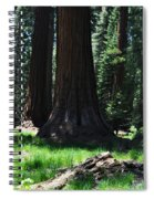 Round Meadow Sequoia Family Spiral Notebook