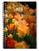 Row Of Colorful Tulips Spiral Notebook