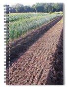 Row Row Row Spiral Notebook