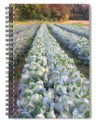 Row Three Spiral Notebook