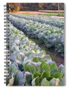 Row Two Spiral Notebook