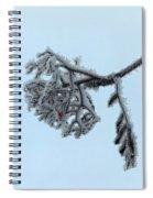 Rowan Spiral Notebook