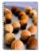 Rows Of Chocolate Truffles On Silver Spiral Notebook