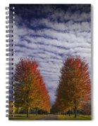 Rows Of Red Autumn Trees With Cirus Clouds Spiral Notebook