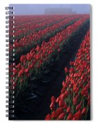 Rows Of Red Tulips Spiral Notebook