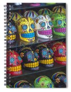 Rows Of Skulls Spiral Notebook