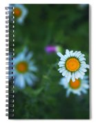 Roxy  Spiral Notebook