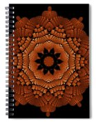 Roy-bl K10-60 Spiral Notebook